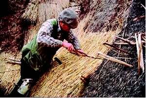 Thatching With Long Straw Keith Quantrill And John Letts